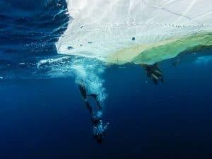 test-ice-dive